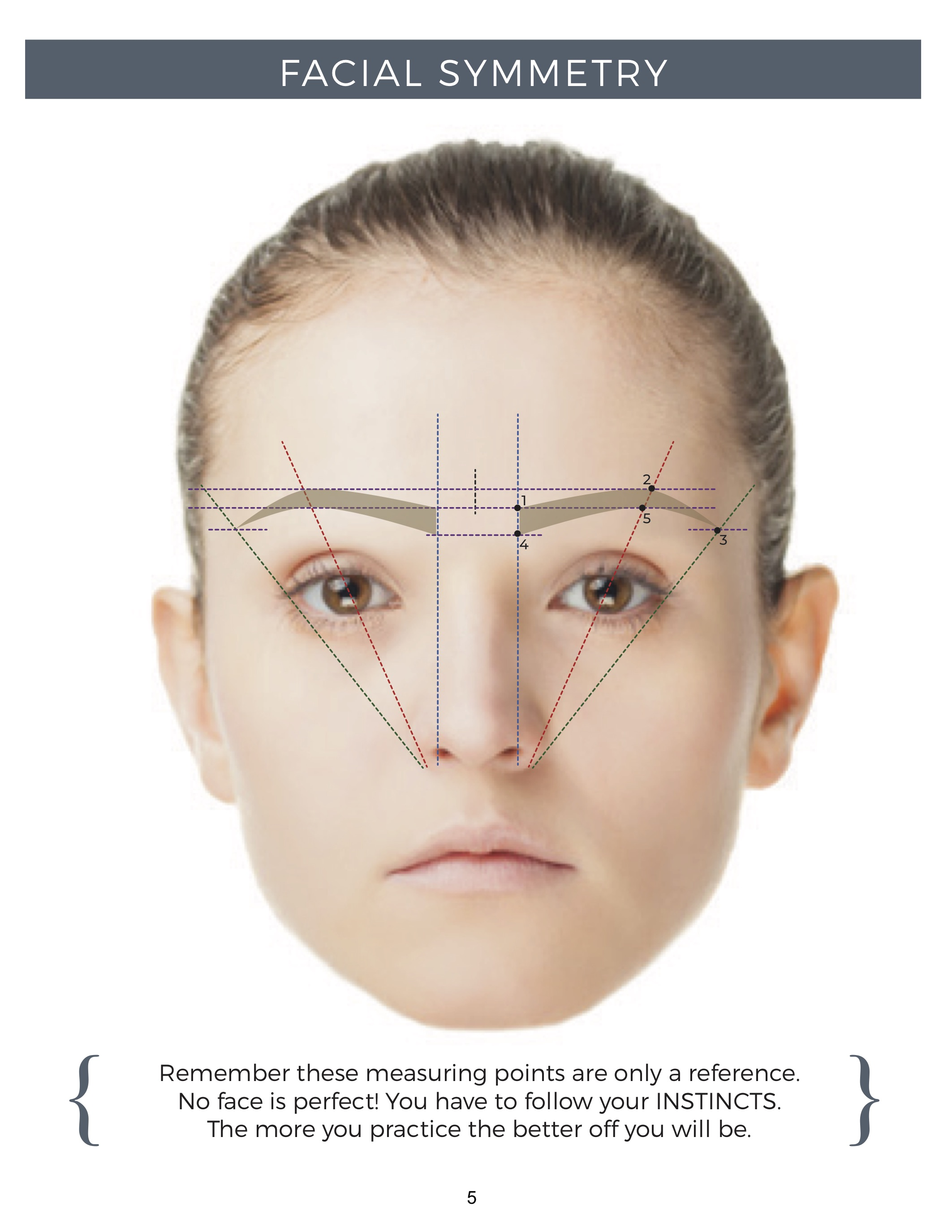 Lesson 4  Brow Mapping  U0026 Building  U2013 3d Brows Classroom